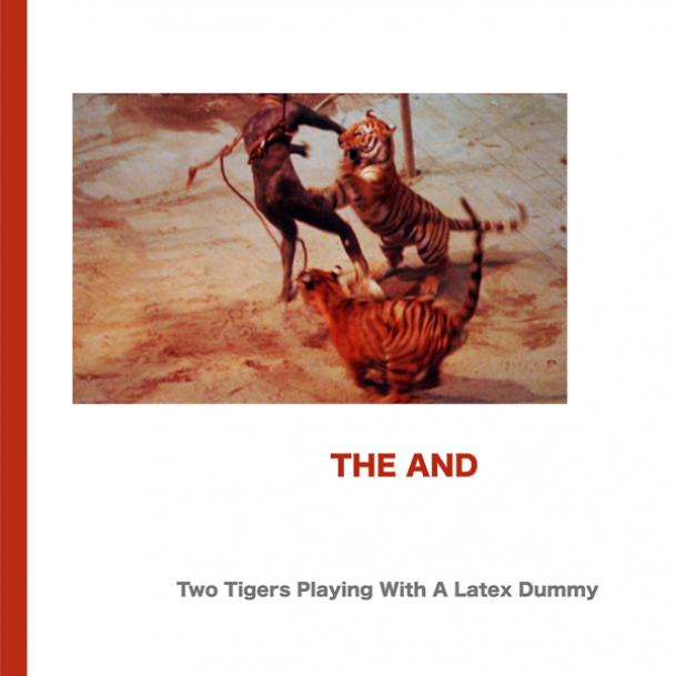 TWO TIGERS PLAYING WITH A LATEX DUMMY